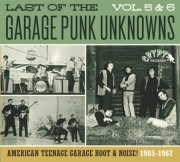 The Last Of The Garage Punk Unknowns - Volumes 5+6