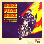 Spoonful - Vol. 30/Shake Pelvis Shake